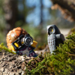 Lady photographer and an owl by Teddi Deppner @mightysmallstories